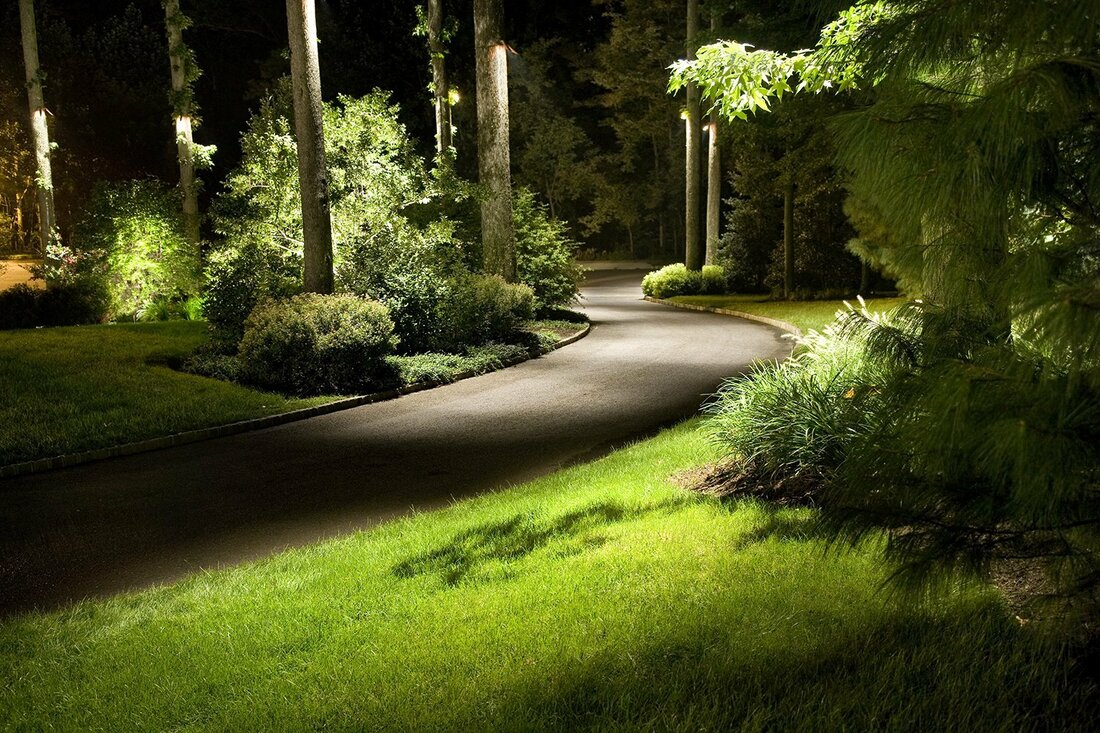 Custom landscape lighting design for yards and trees.